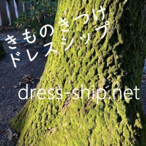 【DRESS SHIPドレスシップ】着物の着せ方教室(他装)|三鷹着付け教室|吉祥寺着付け教室